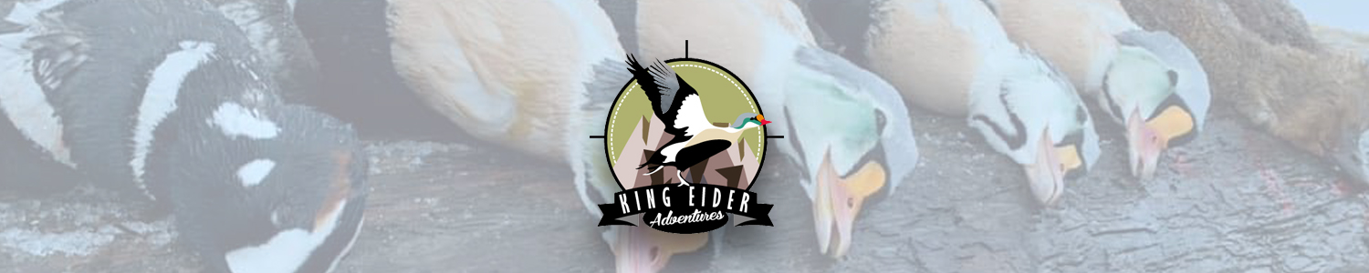 King_Eider_Adventures_Services_footer
